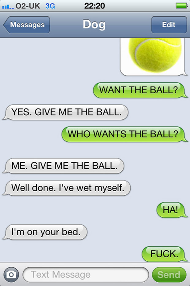 texts-from-dogs-29