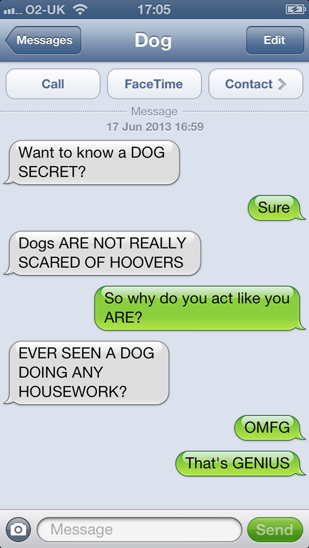 texts-from-dogs-32
