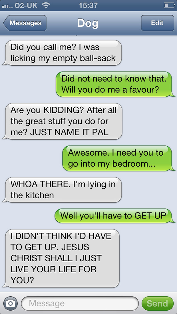 texts-from-dogs-34