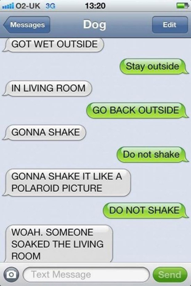 texts-from-dogs-4