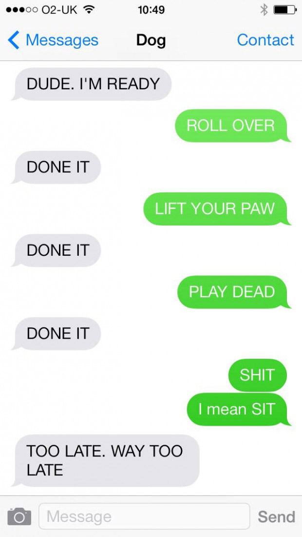texts-from-dogs-6