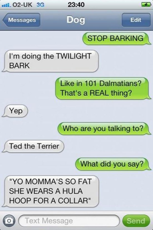 texts-from-dogs-9