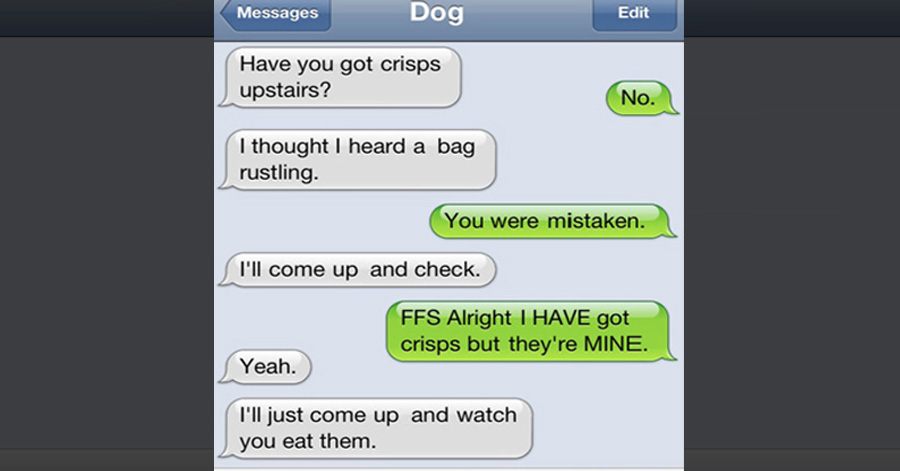 the 35 funniest text messages dogs would send if they could text