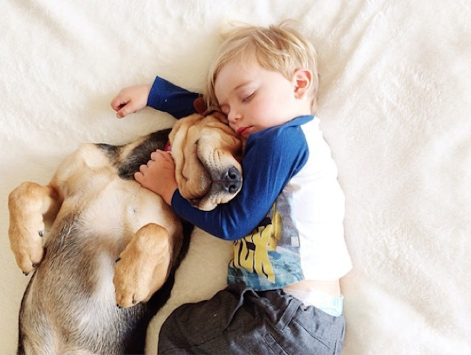 toddler-naps-with-puppy-10