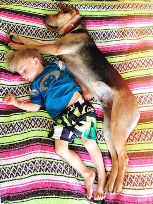 toddler-naps-with-puppy-11