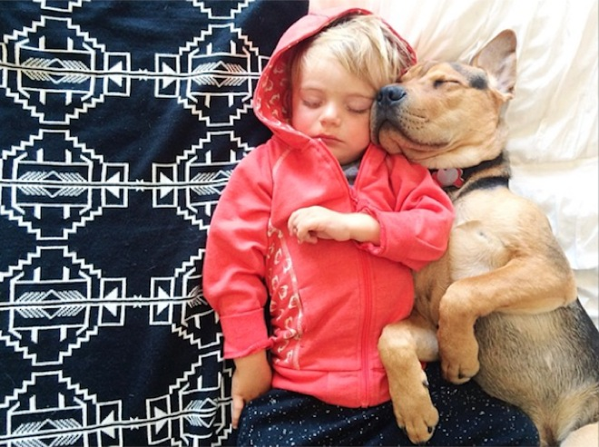 toddler-naps-with-puppy-12