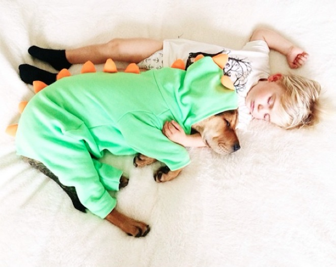 toddler-naps-with-puppy-3