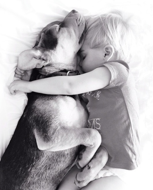 toddler-naps-with-puppy-5