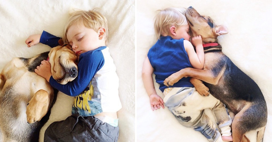 toddler-naps-with-puppy