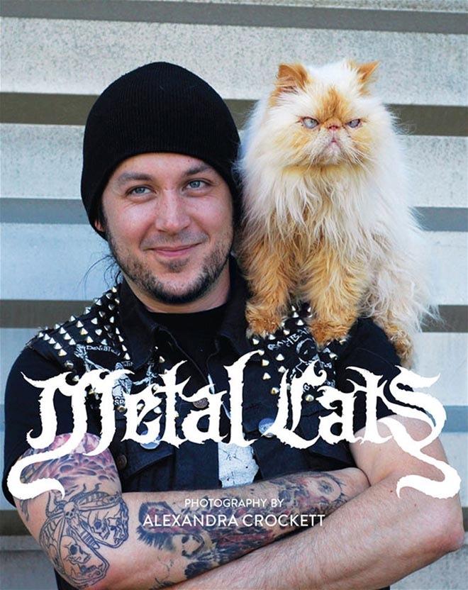metal-cats-10