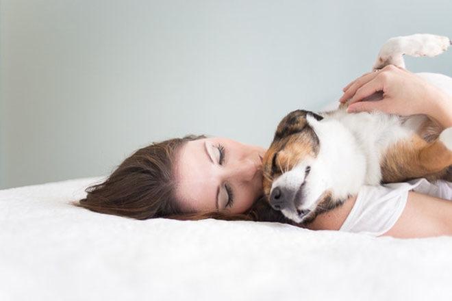 baby-dog-photoshoot-4