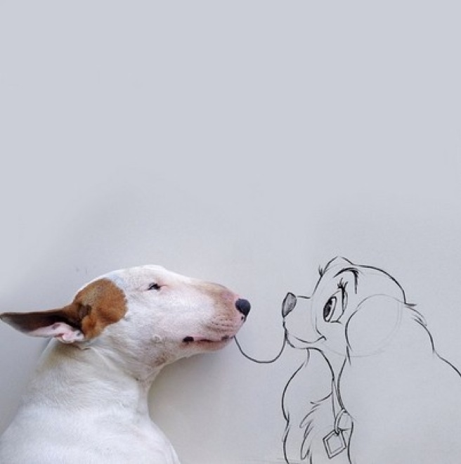 dog-illustrations-1