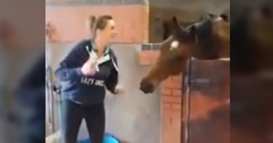 horse-girl-music