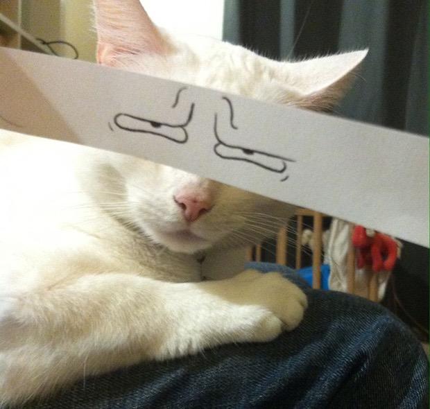via: boredpanda.com