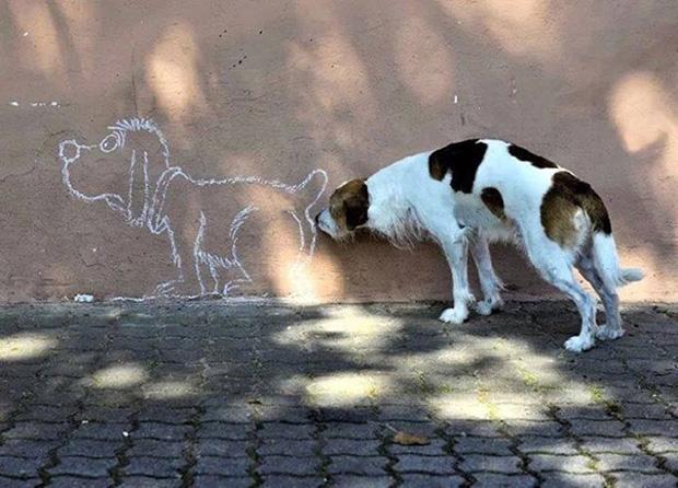 via: imgur.com