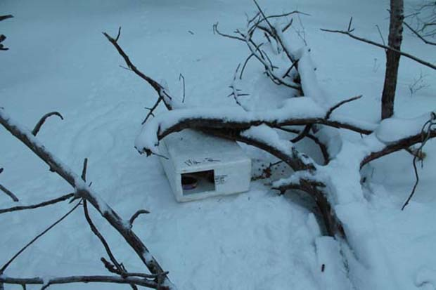 box-in-the-snow-2