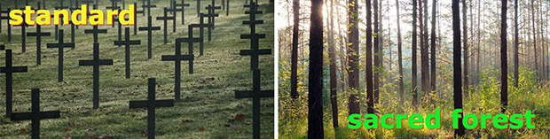 eco-friendly-burial-pods-4