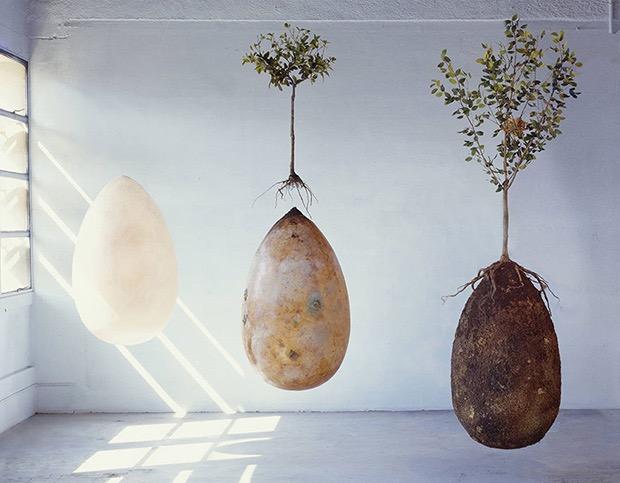 eco-friendly-burial-pods-6