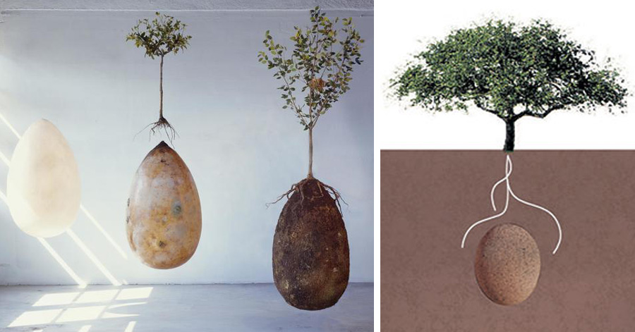 eco-friendly-burial-pods