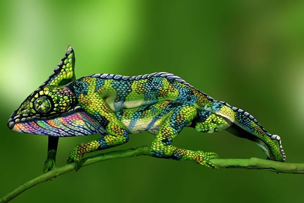 chameleon-body-painting-1b