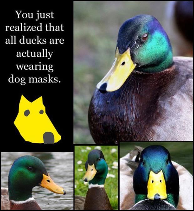 via: reddit.com