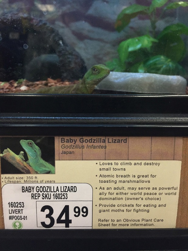 prank-animal-pet-store-1
