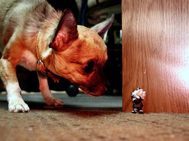 via: flickr.com