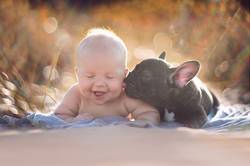 Baby And Bulldog Born On Same Day Think They Are Brothers And Its - Ivette ivens baby bulldog