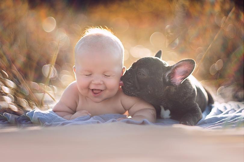 ivette-ivens-baby-bulldog-4