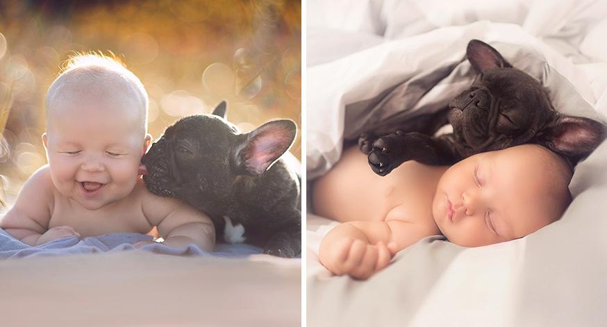 ivette-ivens-baby-bulldog