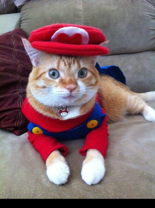 via: costume-works.com