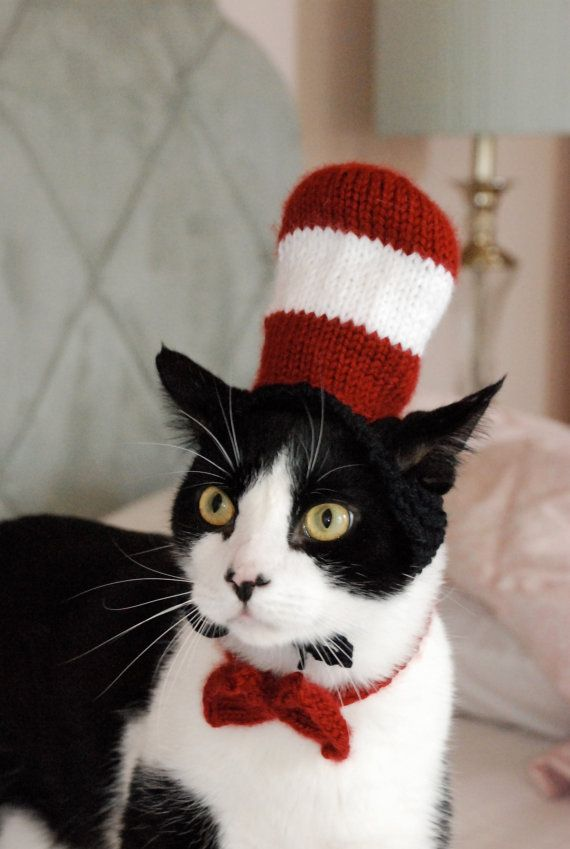 via etsy.com & 26 Hilariously Creative Halloween Costumes For Cats