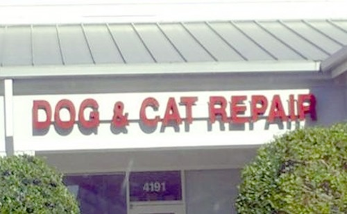 35 Hilarious Business Names That Will Make You Look Twice. #7 Is ...