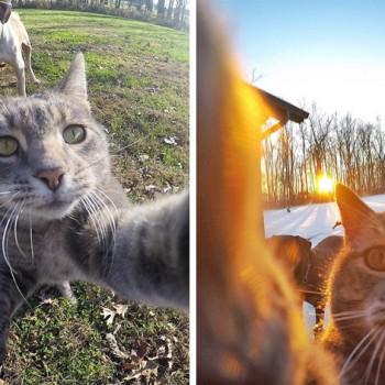manny-selfies