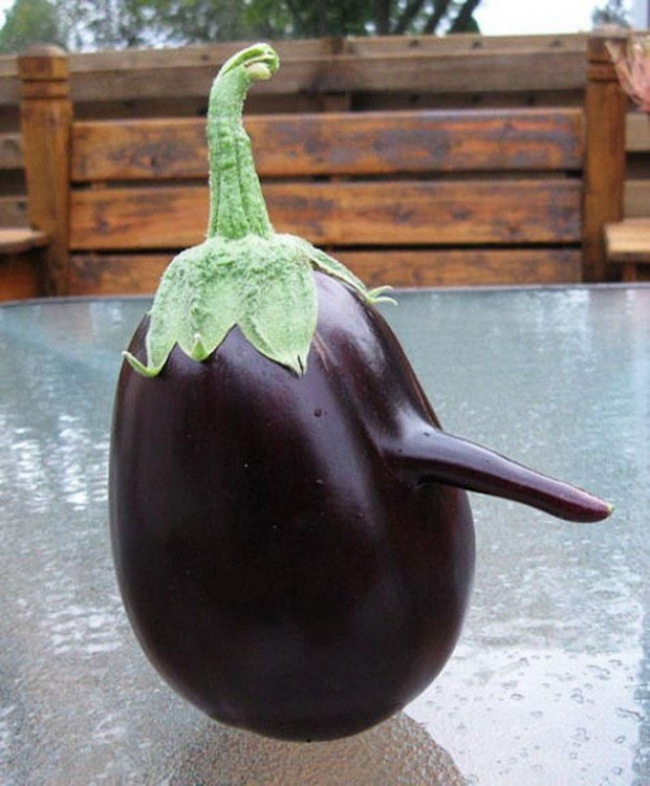 Funny Fruits And Vegetables Looking Exactly Like Something Else - 20 funny fruits and vegetables looking exactly like something else