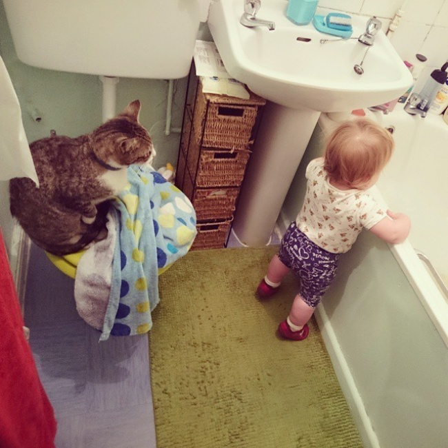 Adorable Photos Proving That Children Really Need A Cat In - 20 adorable photos proving that children really need a cat in their life
