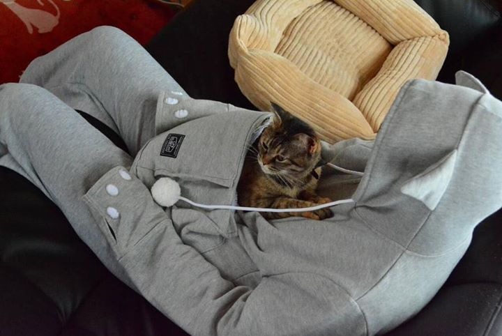 Cozy Cat Pouch Hoodie For Your Cat Let The Snuggling Begin Lushzone