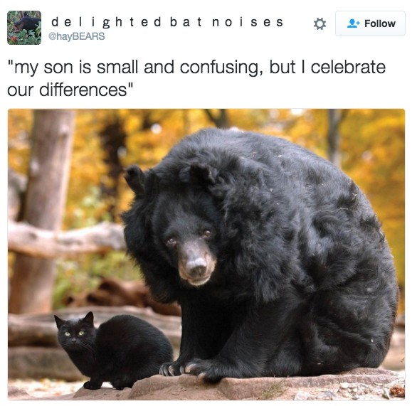 21 Perfect Things That Will Make Your Day So Much Better