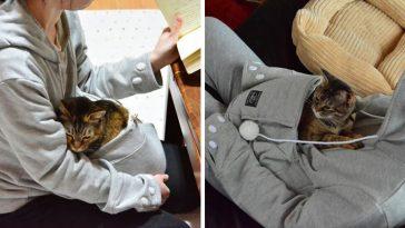 cat-hoodie