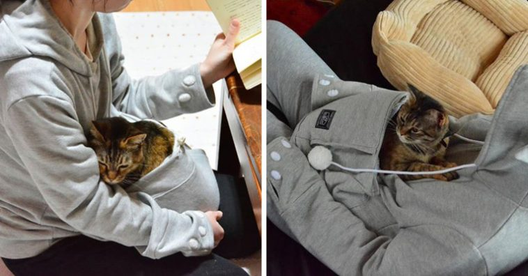 This Cozy Cat Hoodie With Kangaroo Pouch Lets You