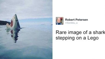 24-hilarious-picture-tweets-that-will-make-you-just-laugh-no-matter-what