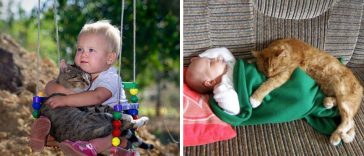 children-need-cat-in-their-life