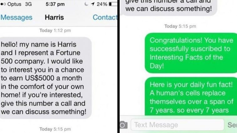 representant-sends-unsolicited-sms-wrong-person-gets-trolled-epic-way-ever