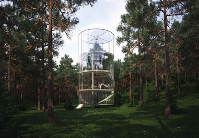 Architect Builds Translucent Home Around A Tree In A Forest In Kazakhstan