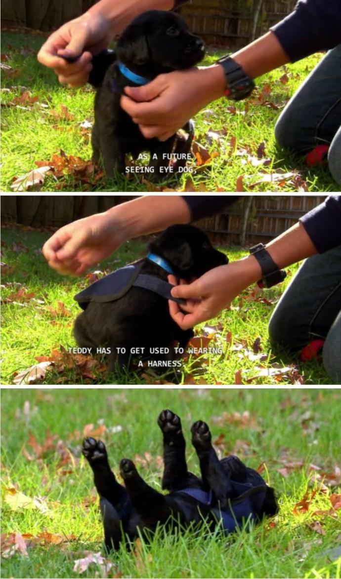 via: tumblr.com
