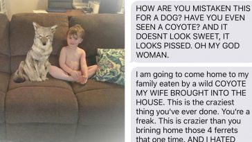 wife-texts-husband-she-brought-a-cute-puppy-home-but-the-photo-shows-a-coyote-and-he-hilariously-freaks-out