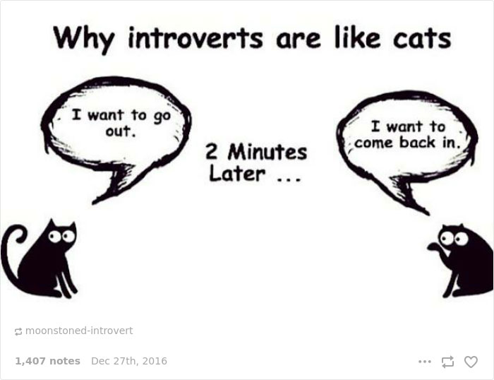 Struggles That Perfectly Sum Up Your Life As An Introvert - 20 struggles perfectly sum life introvert