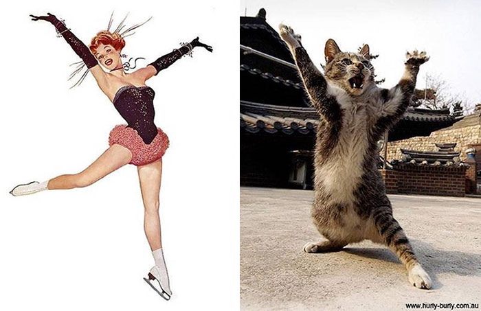 Hilarious Photos Of Cats Posing Like PinUp Girls - 24 hilarious photos cats posing like pin girls