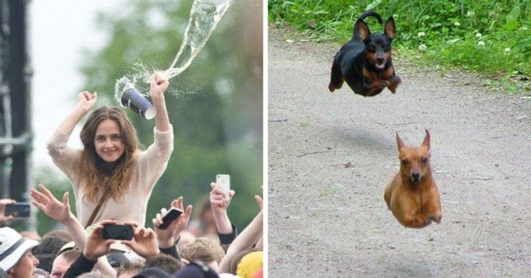 Of The Most Perfectly Timed Photos Ever Taken - 33 of the most perfectly timed photos ever taken