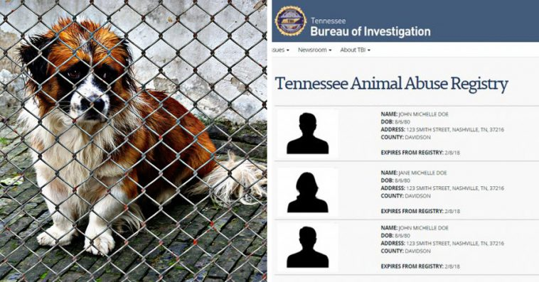 Animal Abusers Will Finally Be Registered Just Like What Happens - Animal abusers will finally registered just like happens sex offenders